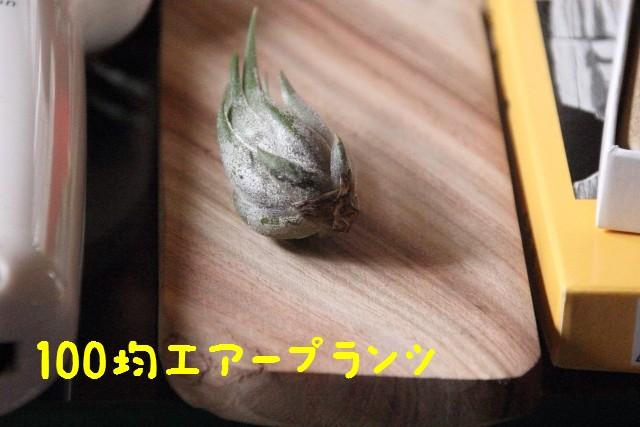 2016_03_06_4754