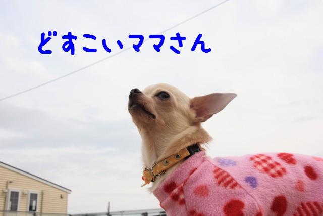 2016_03_06_5122