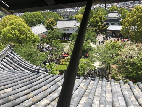 Welcome_Beautiful_Japan_Inuyama_Castle_2019050212