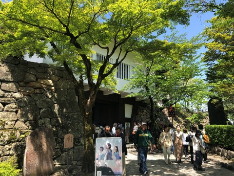 Welcome_Beautiful_Japan_Inuyama_Castle_2019050218