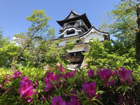 Welcome_Beautiful_Japan_Inuyama_Castle_2019050206