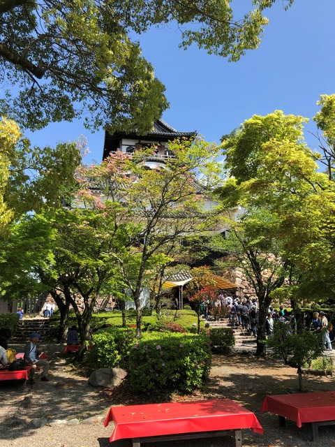 Welcome_Beautiful_Japan_Inuyama_Castle_2019050204