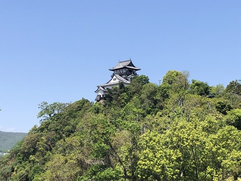 Welcome_Beautiful_Japan_Inuyama_Castle_2019050219