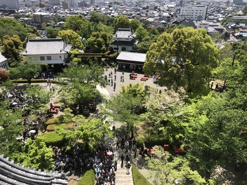 Welcome_Beautiful_Japan_Inuyama_Castle_2019050211
