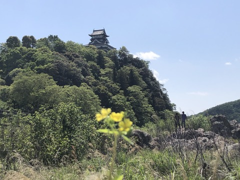 Welcome_Beautiful_Japan_Inuyama_Castle_2019050220