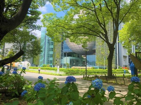 Welcome Beautiful Japan Shirakawa Park 2019062405
