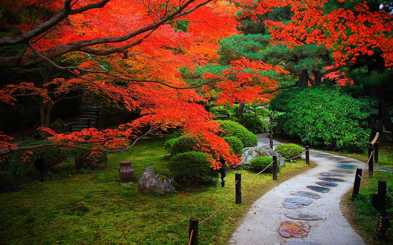 NAVER まとめ【保存版】光のコントラストが美しい!絶対観るべき京都の紅葉まとめ