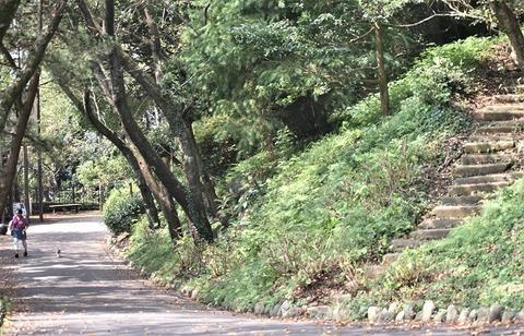 岩本山2-560