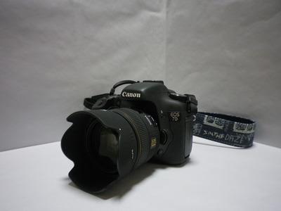 IMGP0024
