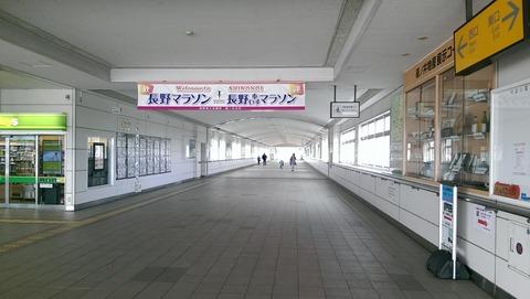 IMAG0281