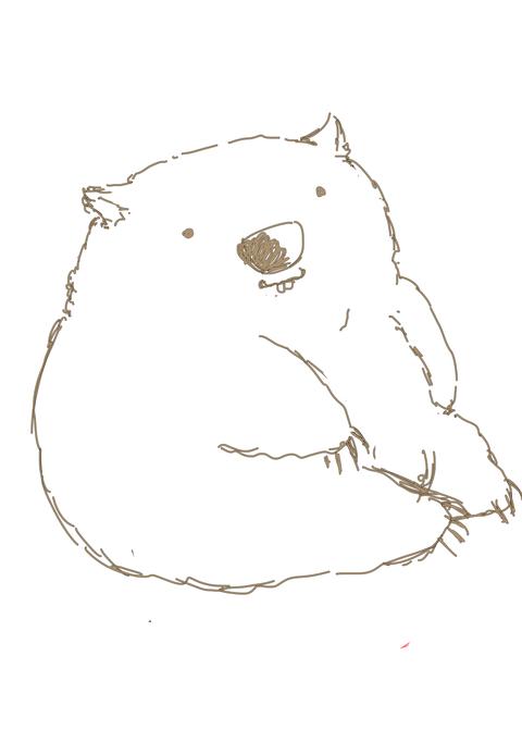 wombat110303