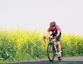 菜の花と自転車