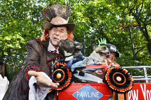 page-one-tompkins-dog-parade-2017-10-26-v01-copy-600x400
