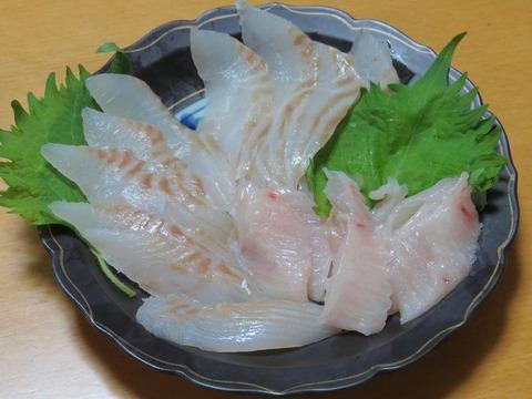 魚 カレイ 刺身