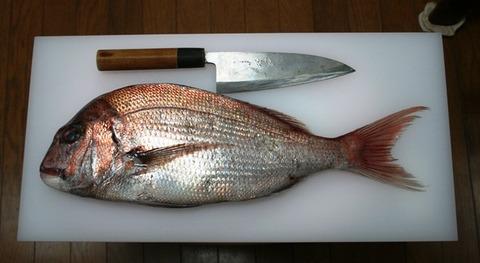 魚 まな板