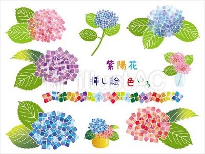紫陽花挿し絵色いろ(v10)
