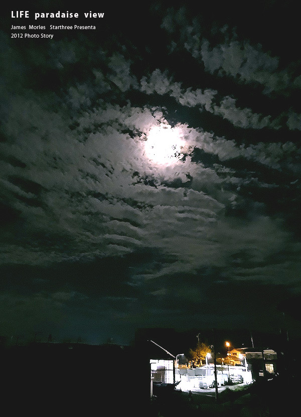 月光はすべての闇を照らし抜く