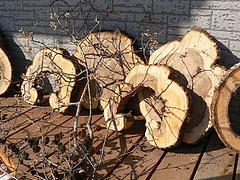 看板用木材