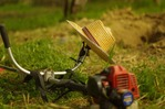 grass-cutting-828544_1920