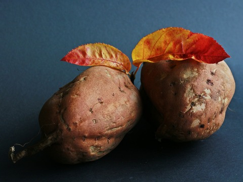 sweet-potato-534874_1920