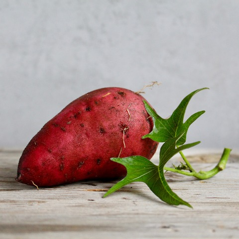 sweet-potato-2086784_1920