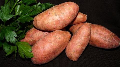 vegetable-3559112_1920