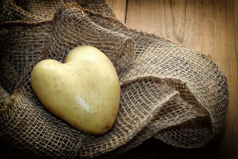 potato-3548557_1920
