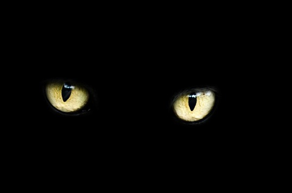 eyes-218185_640