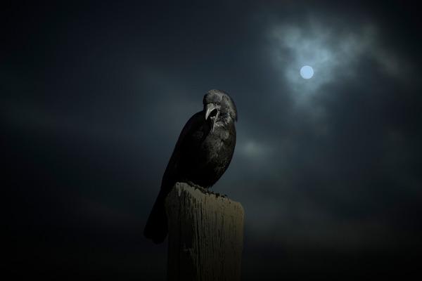 死ぬ程洒落にならない怖い話を集めてみない?『蛇の神』『ピョホホーッピョホホーッ』『順序が逆』他