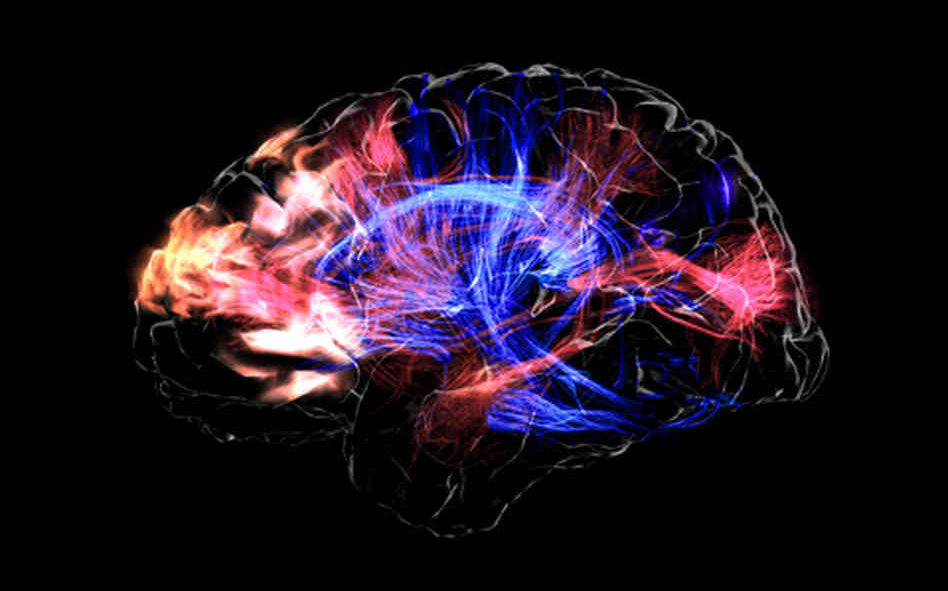 全ては脳が電気信号として情報を得てるだけだぞ
