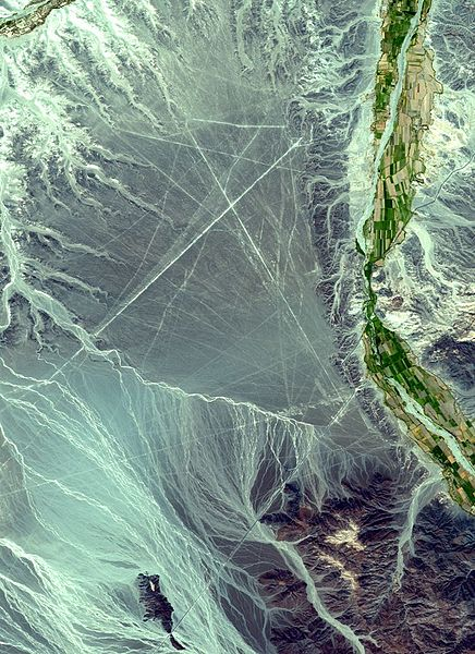 436px-NEO_nazca_lines_big
