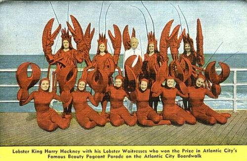 lobster-beauty-contest-atlantic-city-via-flickr-xray-delta-one
