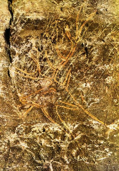 416px-Lascaux-abside