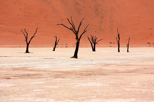 Namibia_photo_02