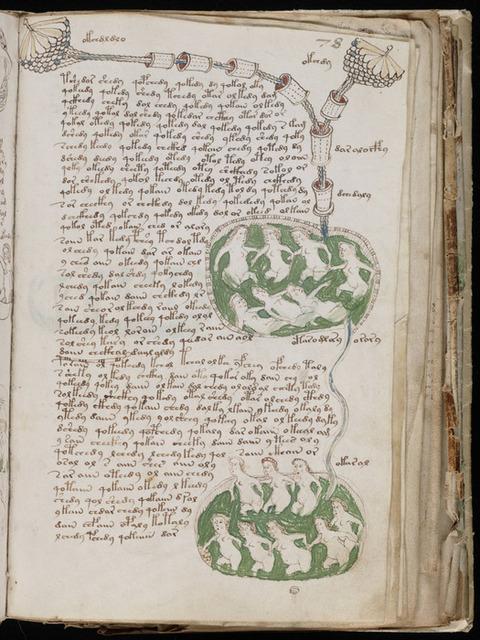 ヴォイニッチ手稿と似てる