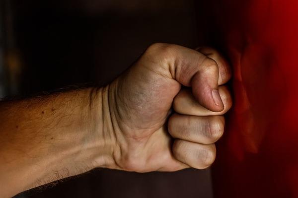 fist-1561157_640