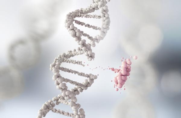 行動遺伝学を知るとますます子供作りたくなくなるな