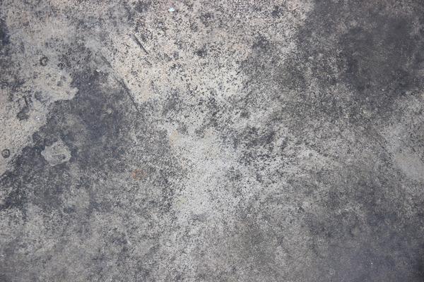 自らひび直し増殖する「生きたコンクリート」、米科学者らが開発