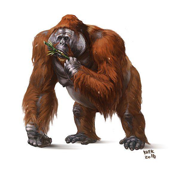 600px-Gigantopithecus