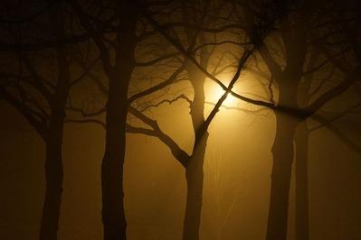 silhouette-3215699_960_720