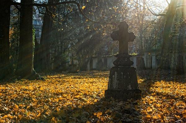 autumn-2182008_640