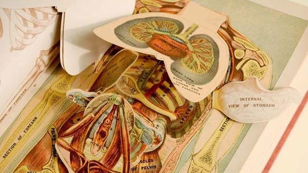 20110521popupmedicalbook