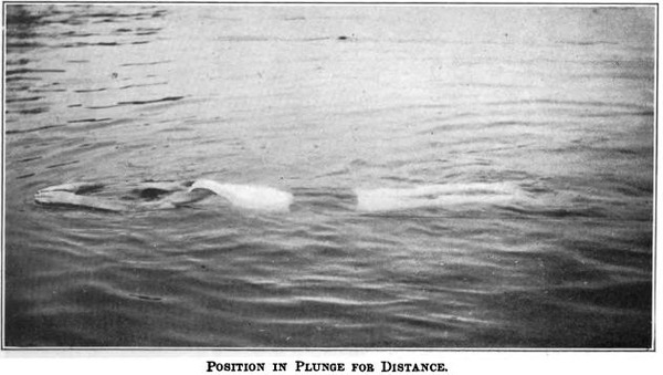 plunge_for_distance_handley_1918