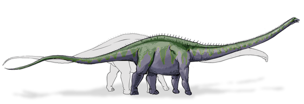 800px-Supersaurus_dinosaur