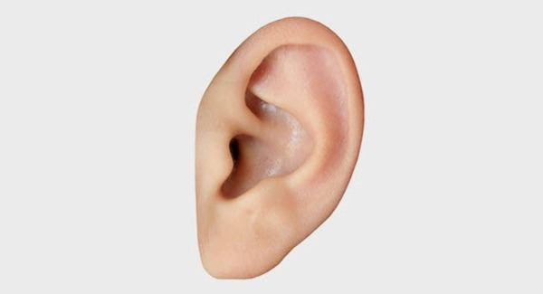 2b-human-ear-502148428