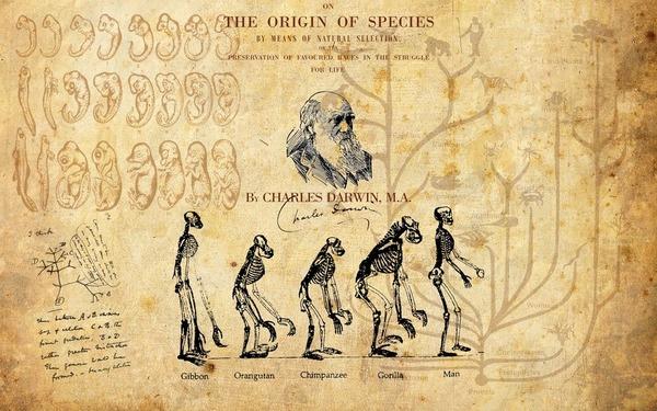 アメリカ人の1/3が進化論を信じてないという事実