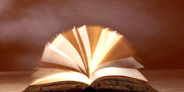 小説を読むのがめちゃくちゃ速い奴いるじゃん?あれってなに?