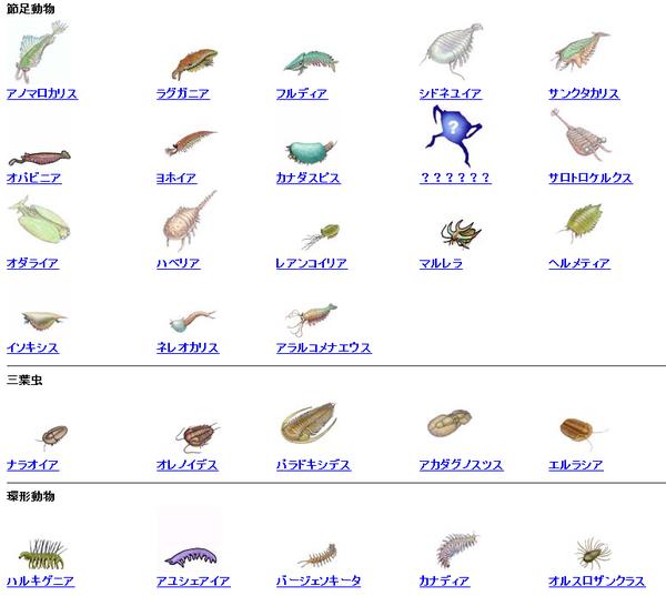 古生代カンブリア紀・バージェス動物群