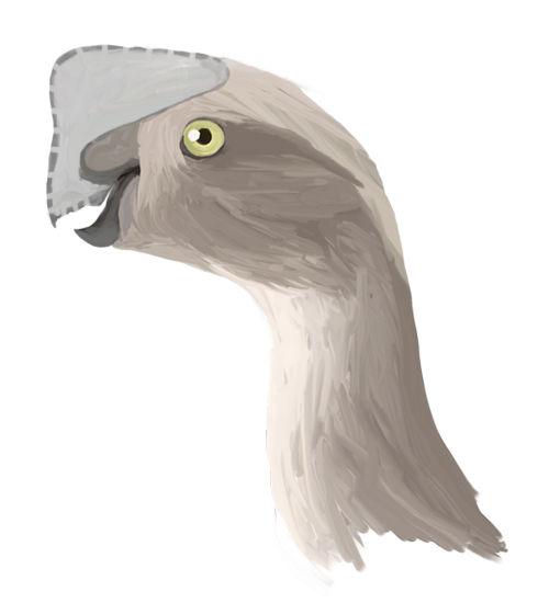 Oviraptor_digital1