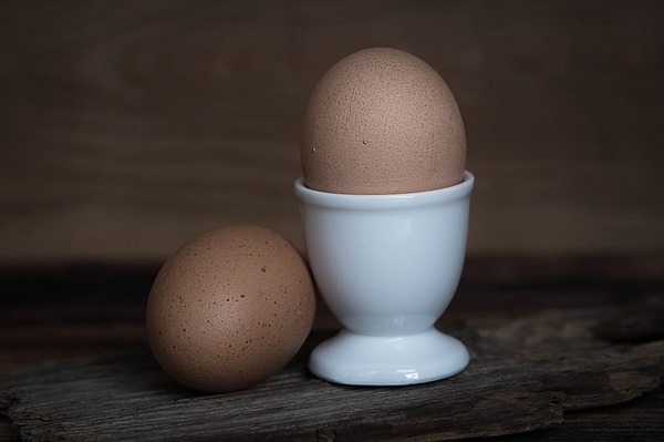 egg-1374141_640